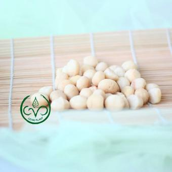 Genki Plant SHOP LINE Source · Genki Plant Macadamia Nut 500g