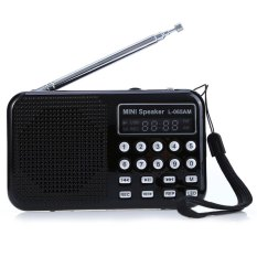 L - 065 Portable AM / FM Radio Music Speaker Support TF SD Card USB AUX Audio Input (BLACK)