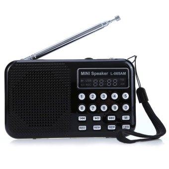 L - 065 Portable AM / FM Radio Music Speaker Support TF SD Card USB AUX Audio Input (BLACK)