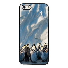 Penguins Frozen Planet Wild Nature For iPhone 4 4S - intl