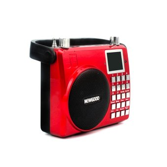 Professional Waistband Voice Amplifier With USB / Echo / Radio / TF Card Functions
