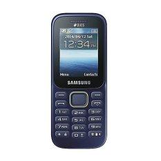 Samsung Guru Music SM-B310E - Biru