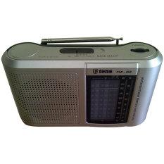 Tens Radio 8 Band TSR-808 - Silver