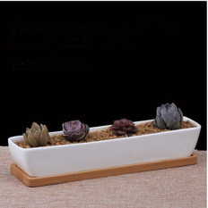 10.5in Ceramic White Rectangle Sucuulent Plant Pot/Cactus Plant Pot With Bamboo Tray - intl