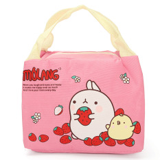 Cute Thermal Picnic Lunch Bag Insulated Cooler Handbag Food Storage Pouch Tote