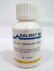 Dalmatians Obat Kutu Dalmat