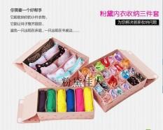 Home-Klik 3 in 1 Underwear Bra Socks Organizer Set - Pink