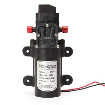 Qiaosha DC 12V 5L/min 60W Micro Car Diaphragm High Pressure Water Pump Automatic Switch NEW - intl