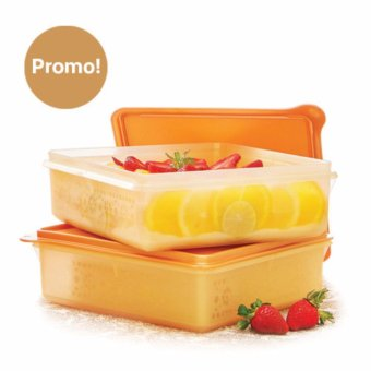 Tupperware Mosaic Snak Stor (2pcs) - Gold Edition