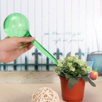 9PCS Automatic Watering Bulb Device Globe House Garden Waterer Houseplant Plant Pot Green - intl