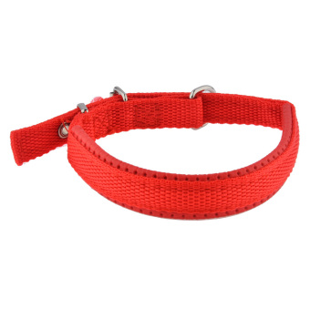 360DSC Super Comfort Adjustable Foam Cotton Pet Dog Collar - S Red (Intl)
