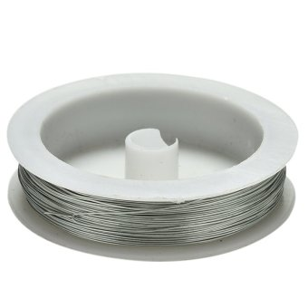 40m Iron Craft Wire Metal Wire Jewelry Craft Soft DIY String 0.5mm Spool Silver - intl