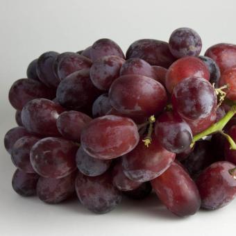Biji Benih Buah Anggur Red Globe Berisi 14 Butir
