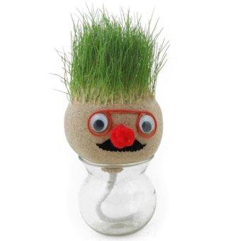 Universal Absorbent Grass Head Doll / Grow Plant Seed Garden