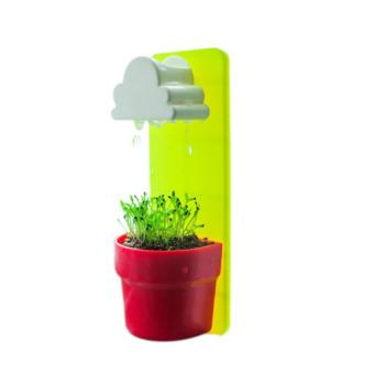 S & F Mini Cloud Rainy Plant Flower Pot Nutritional Soil + Seed