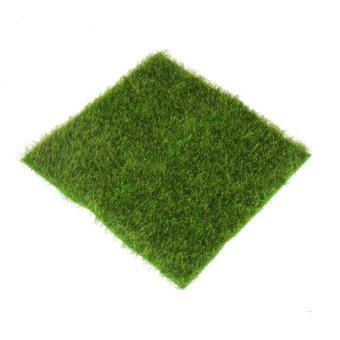 BolehDeals mikro lumut ornamen pemandangan halaman rumput Imitasi untuk dekorasi taman miniatur diseduh sendiri