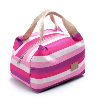 Portable Canvas Insulated Cooler Colorful Stripe Pattern Picnic Grocery Lunch Box Bag Handbag with Zipper for Student Clerk Style 6