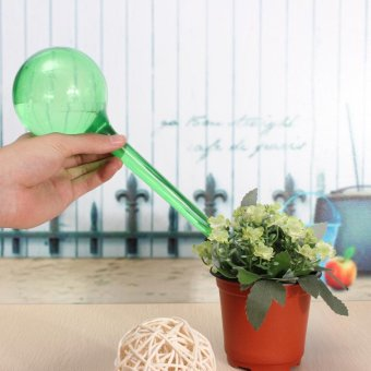 2PCS Automatic Watering Bulb Device Globe House Garden Waterer Houseplant Plant Pot Green - intl