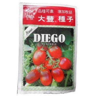 Ta Fung Seed Tomat New Diego F1 Hybrid - Benih Tomat - 5 gram
