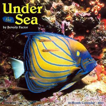 Under the Sea 2017 Wall Calendar