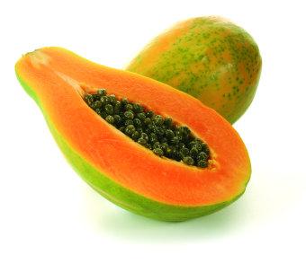 Harga biji benih buah pepaya bangkok berisi 30 butir