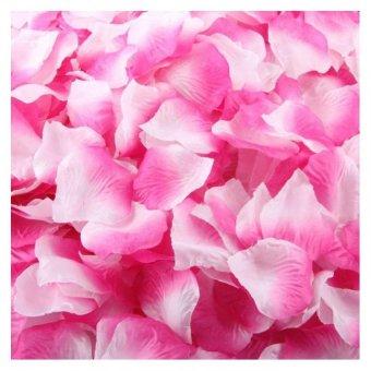 Harga Coconie 1000 buah sutra mawar kelopak buatan pesta pernikahan bunga kesayangan dekorasi berwarna merah muda