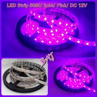 Led strip 5050/ IP44/ PINK/ DC12V