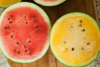 ... Harga biji benih buah semangka mix berisi 10 butir