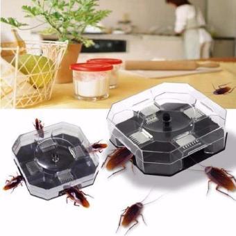 White Sands Racun Semut Pembasmi Hama Insect Ants, 40.000, Update. Universal Perangkap Serangga,hama, Kecoa+Umpan anti gagal - Black, 89.000 ...