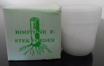 Bibit Bunga Rootone F Stek Powder