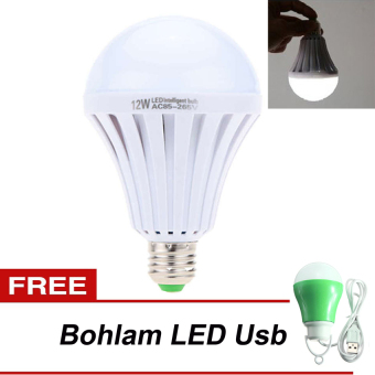 LED Autolamps Bohlam Emergency 15Watt + LED Bohlam Lampu USB 5 Watt - Hijau