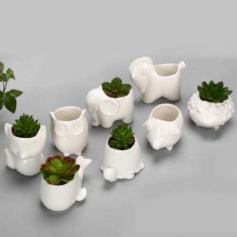 Harga XI YOYO 8 Buah Bentuk Hewan Bunga Tanaman Pot Rumah Kantor Dekorasi Penanam-Putih