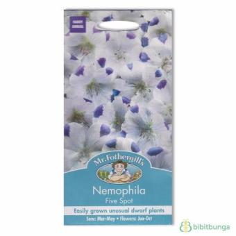Bibit Bunga Benih Mr Fothergills Nemophila Five Spot