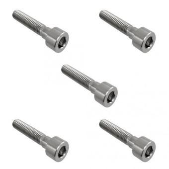 BolehDeals 5pcs M6*35 Titanium Alloy GR5 TC4 Hexagon Cap Head Socket Allen Key Screws - intl