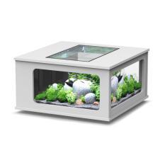 Meja Hias Aquarium - Fish Tank Coffe Table