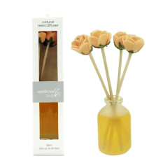 Nature Talk Reeds Diffuser Aroma 30ml AR-17A - Ginger Lime