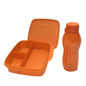 Tupperware Lunch Box set Glittery Eco Lolly 2pcs/set Orange