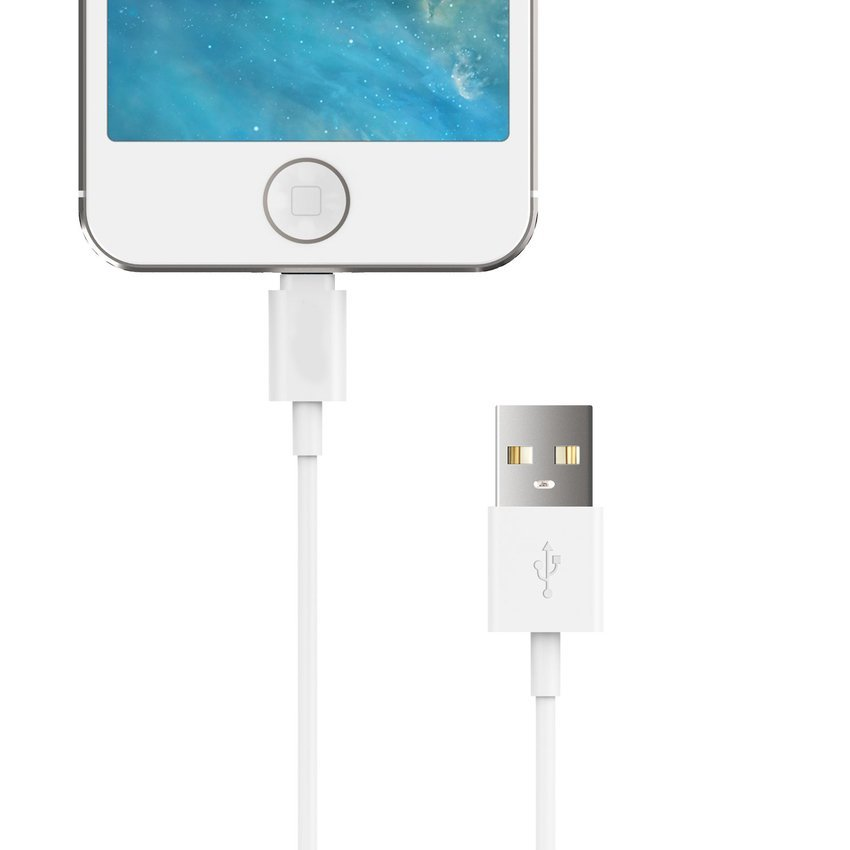 3ft 8 Pin Lightning to USB Cable Charger Cord for iPhone 6 6Plus 5s 5c 5 (White) (Intl)