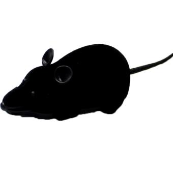 Fang Wireless Remote RC lain mengendalikan tikus mainan untuk…