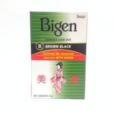 Bigen Powder Hair Dye Brown Black