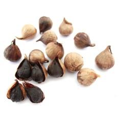 Black Garlic Kualitas SUPER BerKhasiat | Bawang Hitam Lanang / Tunggal