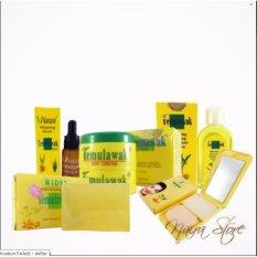 Cream Temulawak Original Holo Super - Paket Super Komplit ( Cream, Sabun, Toner, Serum dan Bedak ) Perawatn wajah