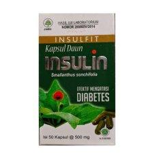Herbal Diabetes Kapsul Daun Insulin - 50 Kapsul