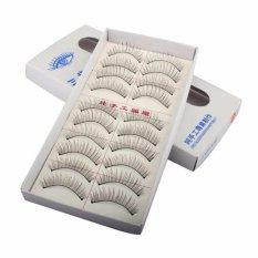 Natural Long 10 Pairs Thin False Eyelashes