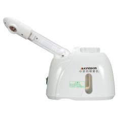 Profesional Facial ozon kukusan Salon kecantikan perawatan kulit wajah semprotan instrumen - International