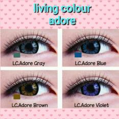 SOFTLENS LIVING COLOR TONE ADORE ANGEL LOVELY / SOFT LENS COLOUR - Brown
