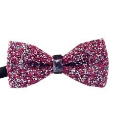 AOXINDA Tied Bow Ties Necktie Bowtie Tie Knot Mens Pre-Tied Bling Rhinestone Bowtie Vintage Luxury Tuxedo Bow Ties - Intl