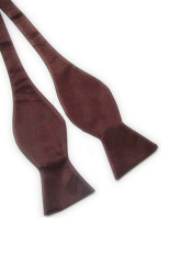Blue Lans Solid Plain Silk Self Tie Bow Tie (Brown)
