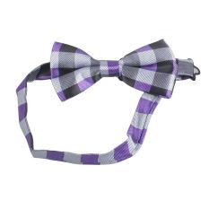 Fang Fang Men Fashion Unique Tuxedo Bowtie Wedding Party Bow Tie Necktie (Grey + Purple)