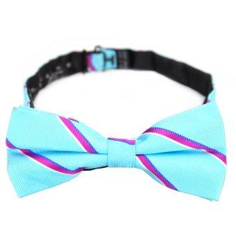 PenSee 100% Silk Mens Pre-tied Bow Tie Fashion Stripe Water Blue & Fuchsia Bow Ties